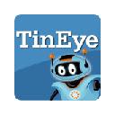 TineEye Reverse Image Search